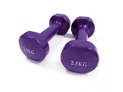 Гантели для фитнеса виниловые по 2,5 кг