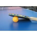 Настольный Теннис (Пинг-Понг)