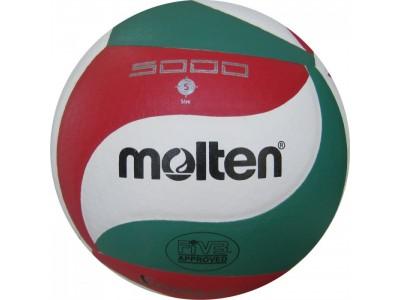 Волейбольный мяч Molten 5000